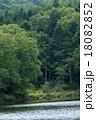 高原 池 風景の写真 18082852