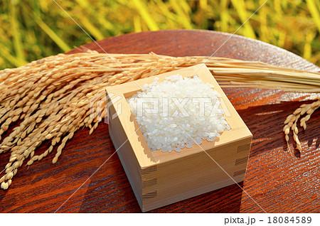 農業、稲穂(イネ・お米・農作物)イメージ。 18084589
