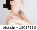 女性 肌 18087338