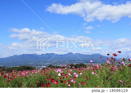榛名山(高崎市鼻高展望花の丘より) 18096129