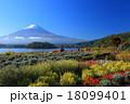 大石公園の富士山 18099401