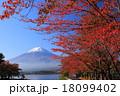 河口湖 桜紅葉と富士山 18099402