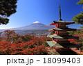 新倉富士浅間神社 桜紅葉と富士山 18099403