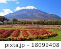 青空 花畑 富士山の写真 18099408