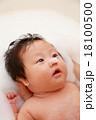 沐浴 お風呂 ベビーバス (赤ちゃん ライフスタイル 赤ん坊 子供 子育て 育児) 18100500