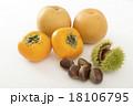 秋の味覚  18106795