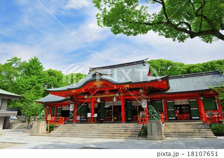 神戸 三宮 生田神社 18107651