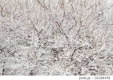 雪背景, 冬景色 18188498