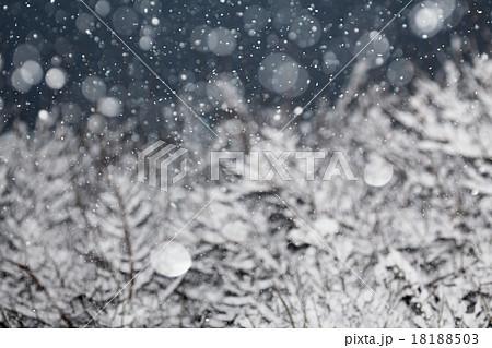 雪の降る夜, クリスマス背景 18188503