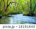 秋 奥入瀬 渓流の写真 18191640