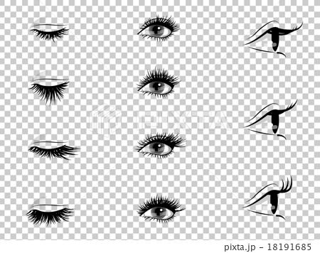 矢量 睫毛 延長 18191685