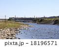 多摩川を渡る京王7000系電車 18196571