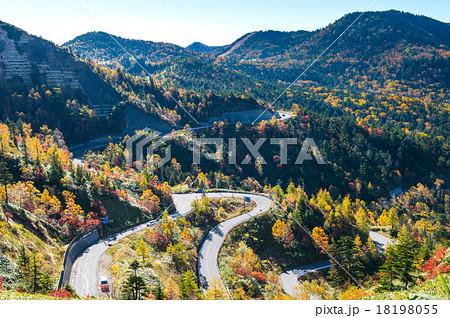 志賀高原 横手山山頂から見る道...