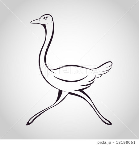 Ostrich logo 18198061