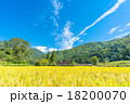 秋の白川郷【稲穂と合掌造り集落】 18200070