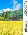 白川郷 田んぼ 合掌造り集落の写真 18200071