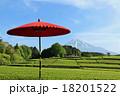 富士山 和傘 茶畑の写真 18201522