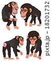 チンパンジー 18201732