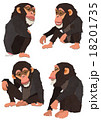 チンパンジー 18201735