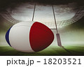 Composite image of french flag rugby ball 18203521