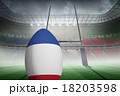 Composite image of french flag rugby 18203598