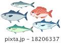鰯、鮪、鯖、鰹、鯛のイラスト 18206337