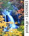 竜頭の滝 紅葉 瀧の写真 18206825