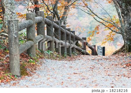 蔵王滝見台遊歩道 18218216