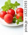 トマト 18223093