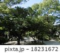 友呂岐緑地 18231672