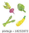 野菜イラストセット 18232872
