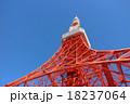 東京タワー タワー 展望台の写真 18237064