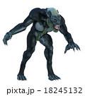 18245132