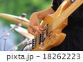 野外ライブでのベース演奏 18262223