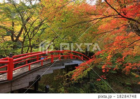 伊香保温泉 河鹿橋 18284748