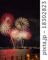 花火 花火大会 風景の写真 18302823