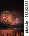 花火 花火大会 風景の写真 18302832