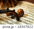Violin head on sheet music 18307622