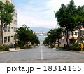 函館・八幡坂 18314165