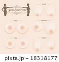 乳房 形 Breast Shape chart 18318177