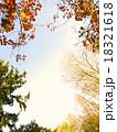 秋色の縁どり-C 18321618