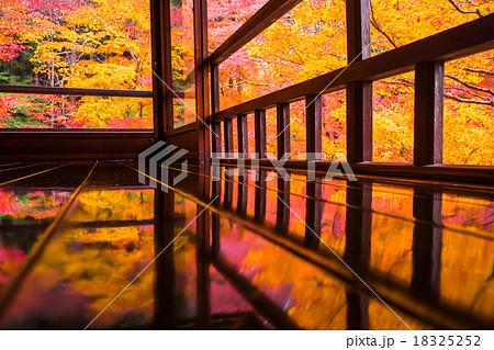 瑠璃光院の秋 18325252