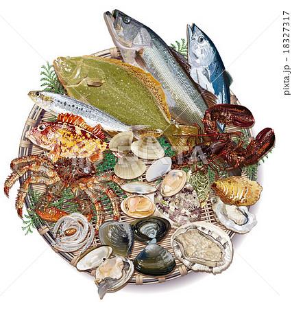 魚食材 18327317