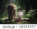 Boy reading book with elephant  18334557