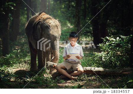 Boy reading book with elephant