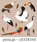 Set of birds. Vector Illustration 18338340