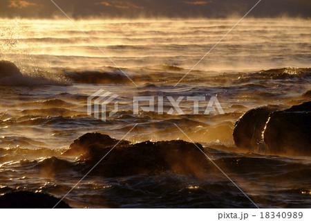 海の毛荒らし 18340989
