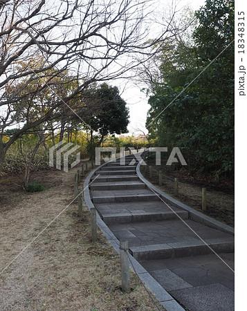 葛西臨海公園の弧を描く階段と植栽 18348315
