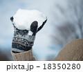 雪遊び 18350280