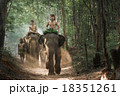 Mahout shepherd Elephant in forest at Elephant Village Thailand. Conservation of Animals Asia. 18351261